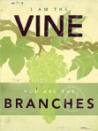 Vine and Branch